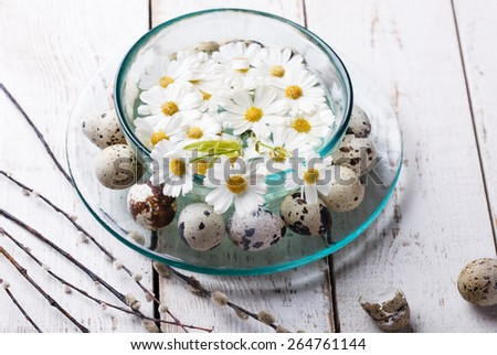 Festive decorations,quail eggs, willow, natural flowers in the bowl of water.Easter decorations.selective focus