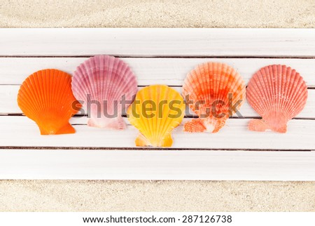 Few colorful clams on a wooden planks over sandy background. - stock photo