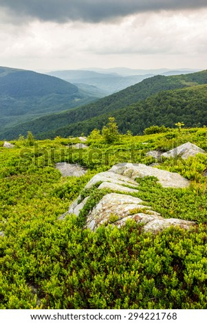 few trees and stones on the edge of hill side  in the grass on top of high mountain range - stock photo