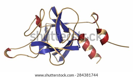 Fibroblast Growth Factor 9 (FGF9, Glia-activating factor) protein. Plays essential role in male development (sex determination). Cartoon representation. Secondary structure coloring. - stock photo