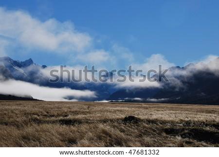 Field along Caples Track, New Zealand - stock photo