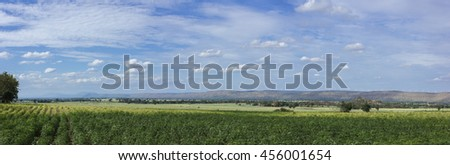 field and blue sky in panorama frame. - stock photo