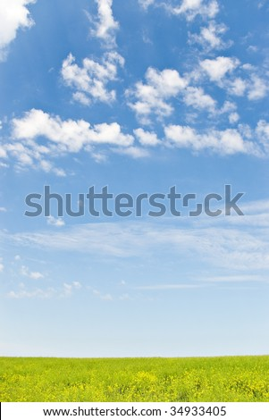 field and blue sky with white clouds - stock photo