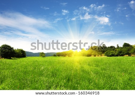 Field and bright sky with sun - stock photo