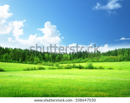 field and forest in spring time - stock photo