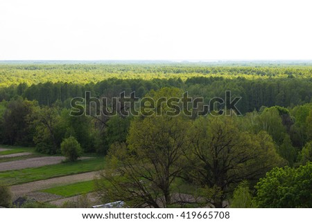 Field and forest with a height. - stock photo