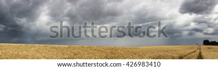 field and storm panorama