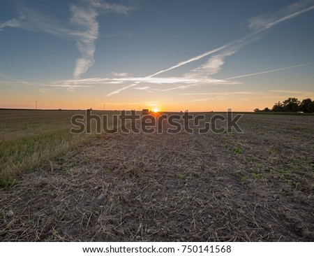 Field and sunset