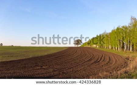 field arable farmer. - stock photo