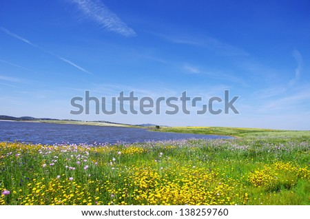 Field at spring time, near alqueva lake, Portugal. - stock photo