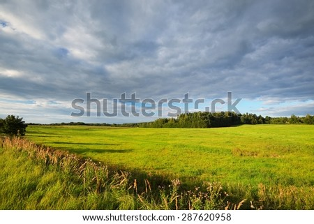 Field in the countryside