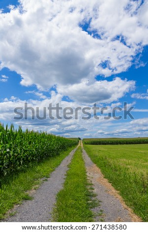 Field Lane - stock photo