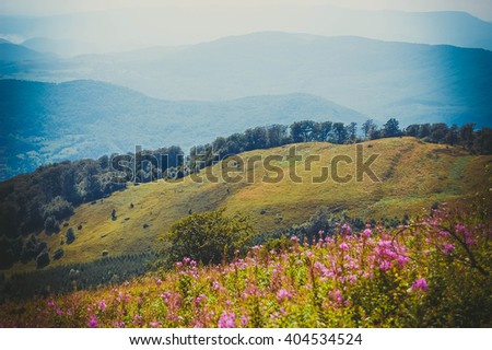 field, meadow on the hillside in the summer day - stock photo