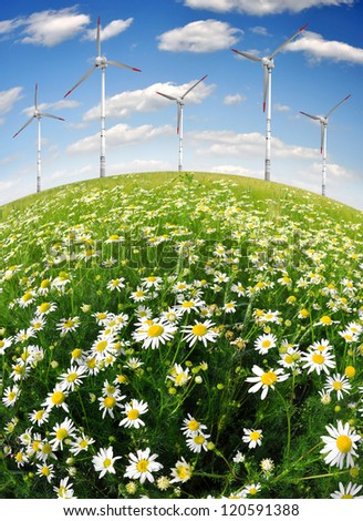 field of daisies with wind turbines - stock photo