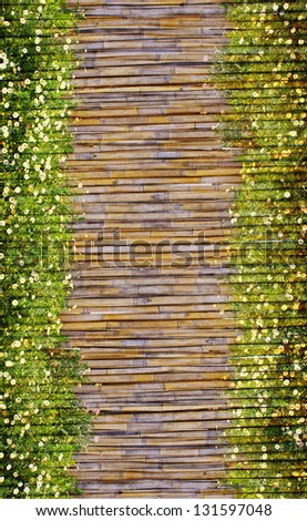 field of daisy flowers and bamboo frame