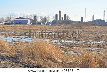 Field of early spring with dry grass.