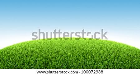 Field of fresh green grass, 3d render - stock photo