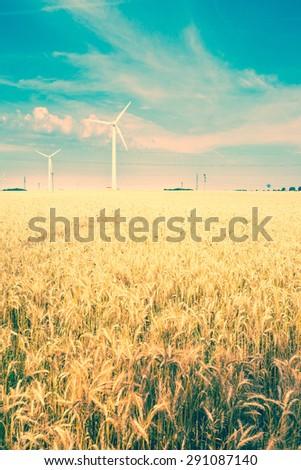field of grain and wind turbine - stock photo