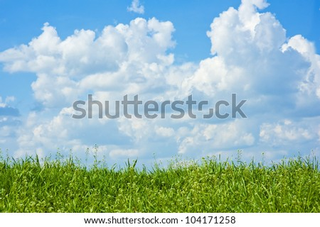 field of grass and perfect sky with clouds - stock photo