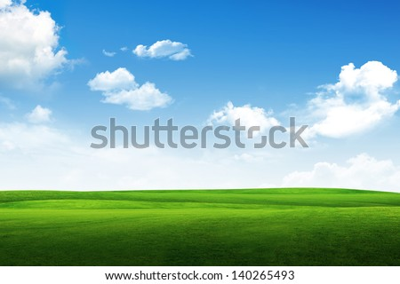 Field of grass, tree and blue sky
