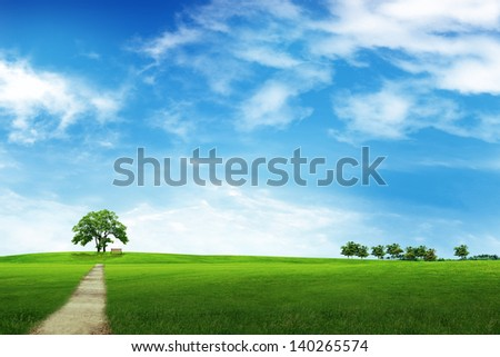 Field of grass, tree, road and blue sky - stock photo