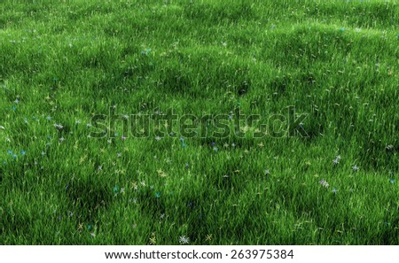 Field of grass with flowers - stock photo