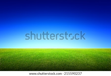 Field of green grass and beauttiful sky