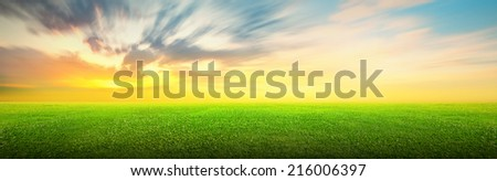 Field of green grass and beauttiful sky at sunset or sunrise