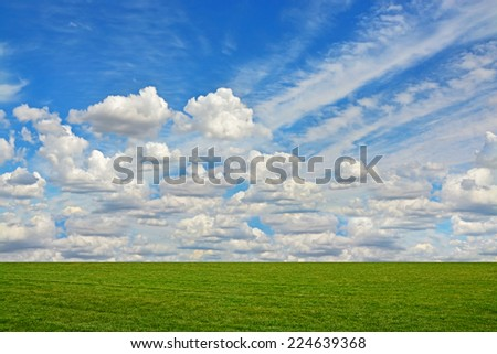 Field of green grass and  bright blue sky with fluffy clouds - stock photo