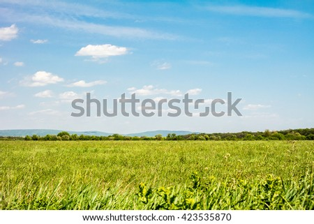 Field of green grass and sky. Background with cloudy sky and grass.  - stock photo