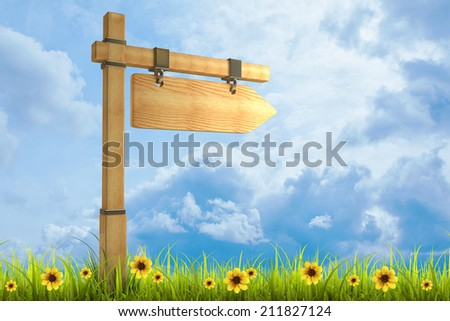 Field of green grass and sky with wooden arrow - index on a column High resolution 3d  - stock photo