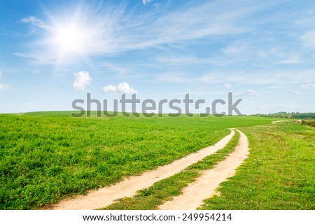 Field of green grass. Dirt road to the horizon. Sunny day. - stock photo