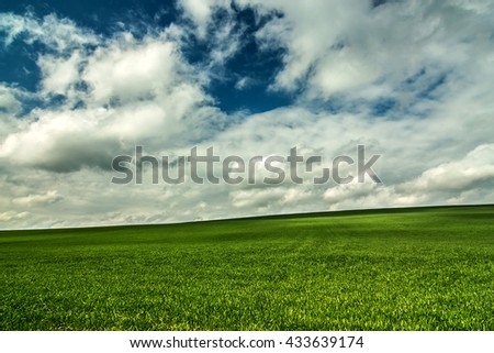 Field of green grass, sky and clouds.