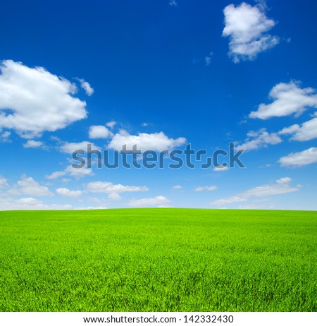 field of green grass with white clouds - stock photo