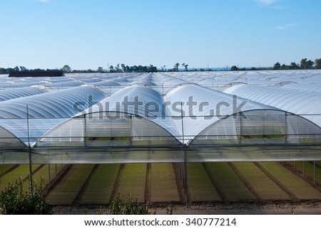 Field of greenhouse prepared for cultivation - stock photo