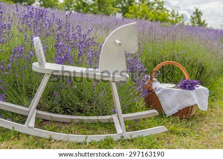Field of lavender with white rocking horse