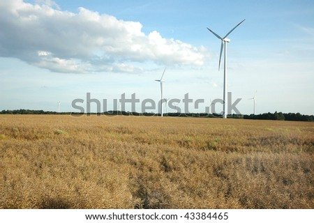 field of long wind power stations