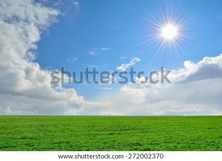 field of lush green grass under a cloudy sky - stock photo