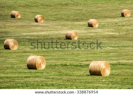 Field of Many Round Bales