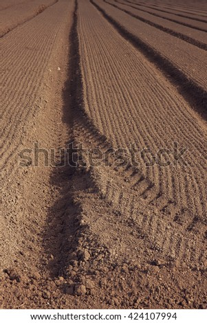 field of plowed land with distant trees