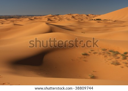 Field of sand dunes in Merzouga, Morocco