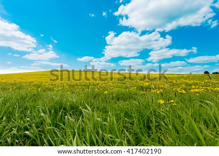 Field of spring flowers dandelions, Dandelion meadow. Yellow dandelion on meadow hill, against blue sky with clouds. Many dandelions on green. Beautiful countryside - stock photo