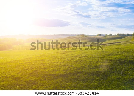 field of spring grass and forest. Green Field and Beautiful Sunset