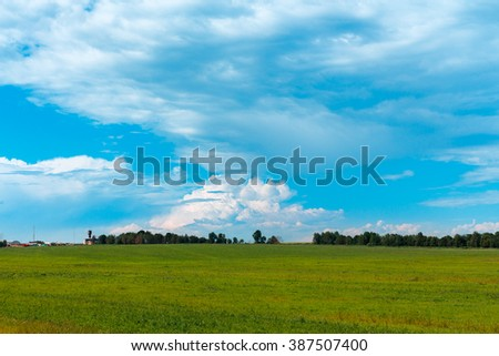 Field of summer grass. Forest on the horizon. Cloudy sky.