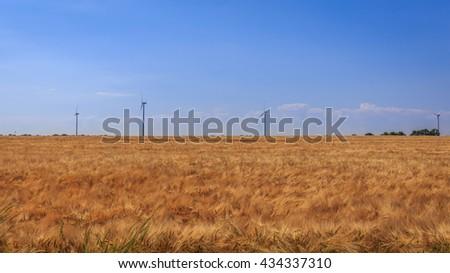 Field of wheat near a wind farm - stock photo
