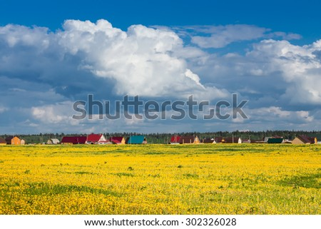 Field of yellow dandelions against the blue sky. Rural landscape. - stock photo