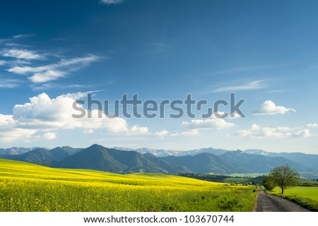 Field road and mountains and low horizon - stock photo