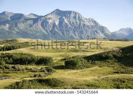 Field view with mountain background in national park - stock photo