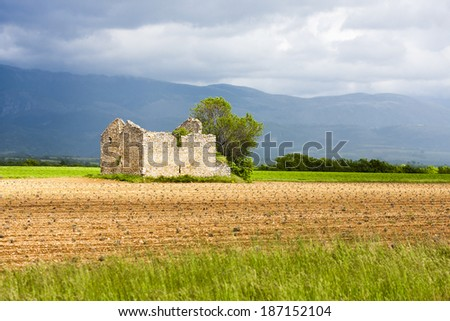 field with a tree and ruin of house, Plateau de Valensole, Provence, France - stock photo