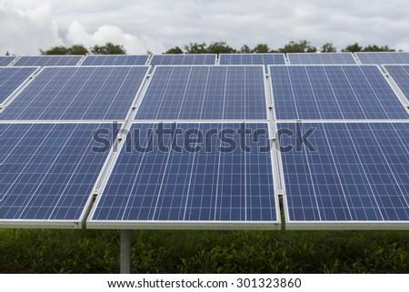 Field with blue siliciom solar cells alternative energy to collect sun energy - stock photo